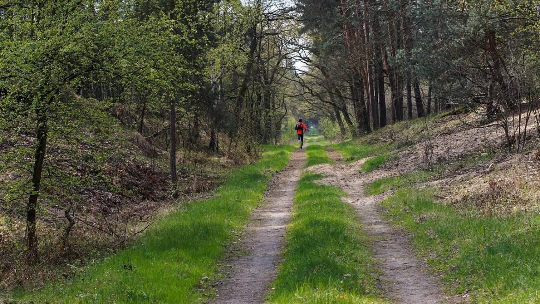 Existe-il une tactique pour gérer les trails ?